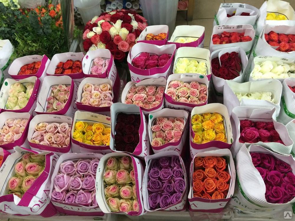 Купить цветы оптом цены